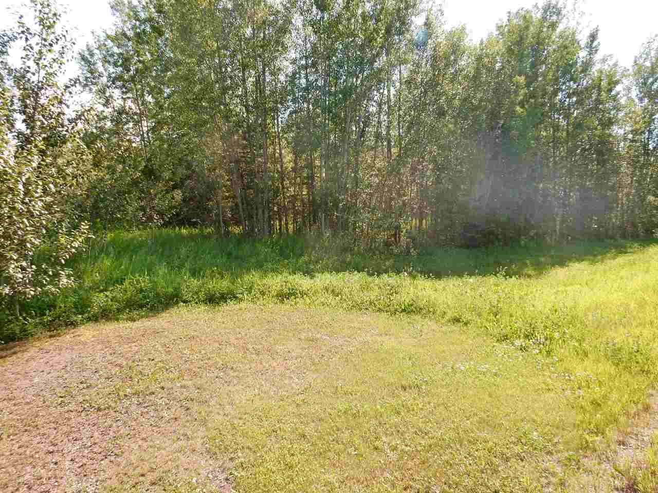 Photo 5: LOT 18 Pinebrook Estates: Rural Thorhild County Rural Land/Vacant Lot for sale : MLS® # E4010007