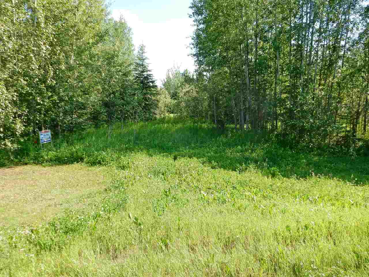Photo 4: LOT 18 Pinebrook Estates: Rural Thorhild County Rural Land/Vacant Lot for sale : MLS® # E4010007