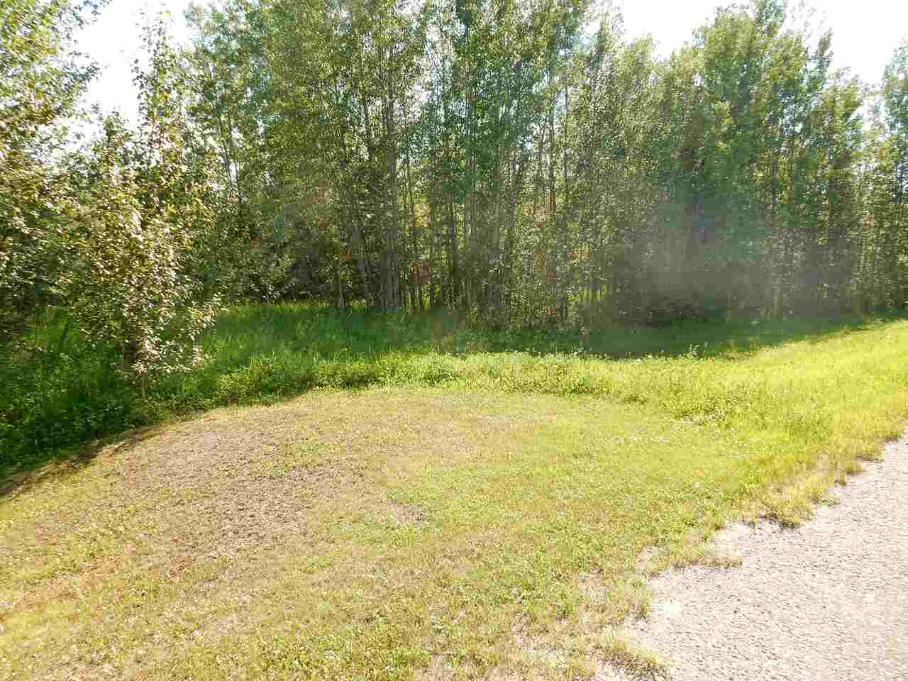 Photo 6: LOT 18 Pinebrook Estates: Rural Thorhild County Rural Land/Vacant Lot for sale : MLS® # E4010007