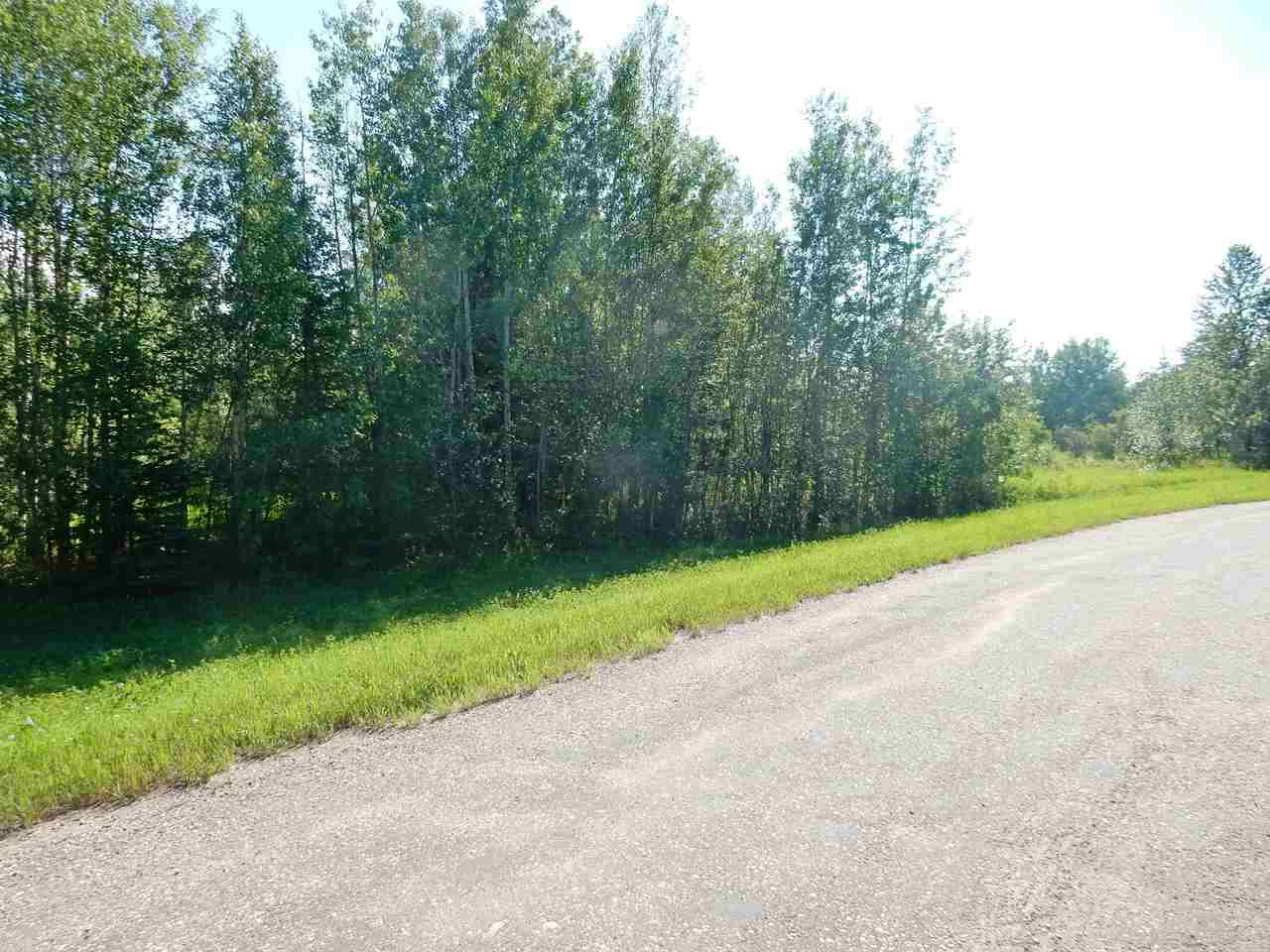 Photo 7: LOT 18 Pinebrook Estates: Rural Thorhild County Rural Land/Vacant Lot for sale : MLS® # E4010007
