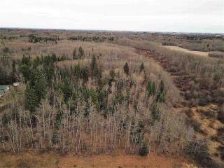 Main Photo: 17 26213 TWP RD 512: Rural Parkland County Rural Land/Vacant Lot for sale : MLS® # E4095547