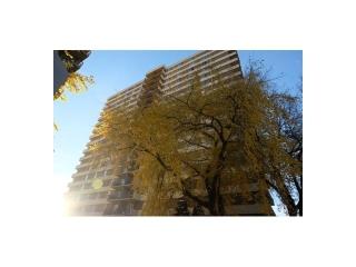 Main Photo:  in Edmonton: Zone 12 Condo for sale : MLS(r) # E3393098