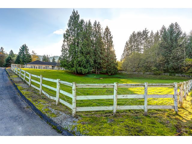 Photo 20: 25890 116 Avenue in Maple Ridge: Websters Corners House for sale : MLS® # R2009574