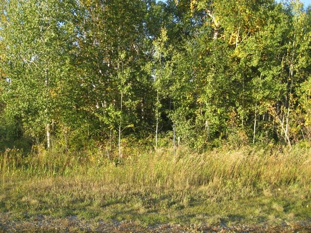 Main Photo: 17 54126 Rge Rd 52: Rural Lac Ste. Anne County Rural Land/Vacant Lot for sale : MLS® # E4064179