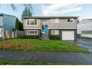 Main Photo: 4851 205A Street in Langley: Langley City House for sale : MLS® # R2222634