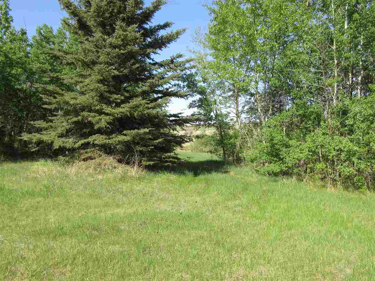 Main Photo: 21,23 57517 Lily Lake Road: Rural Sturgeon County Rural Land/Vacant Lot for sale : MLS®# E4113895
