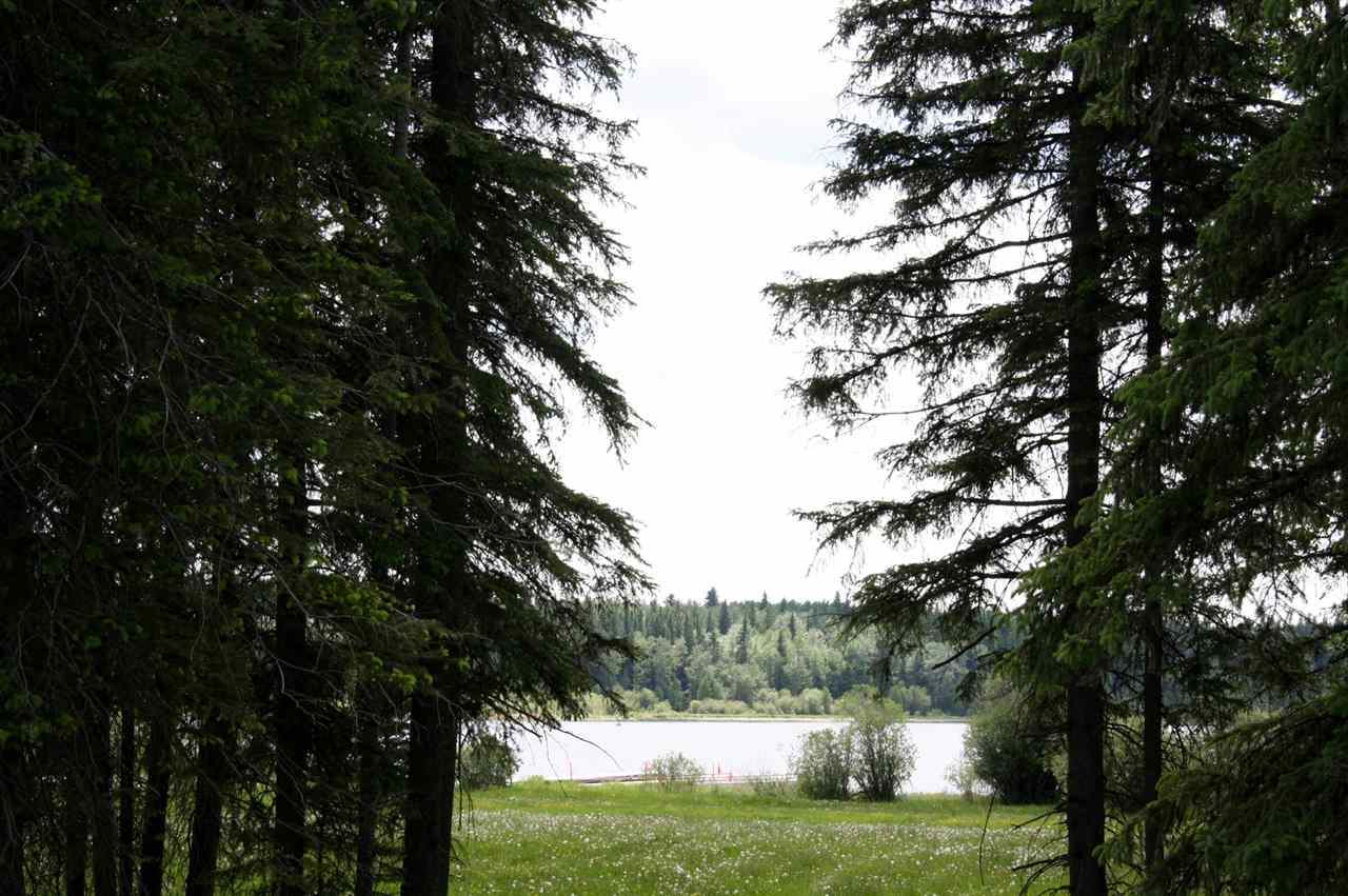 Main Photo: 11 Silver Springs Drive: Rural Wetaskiwin County Rural Land/Vacant Lot for sale : MLS® # E4064082