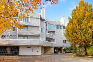 "Main Photo: 317 7751 MINORU Boulevard in Richmond: Brighouse South Condo for sale in ""CANTERBURY COURT"" : MLS® # R2218590"