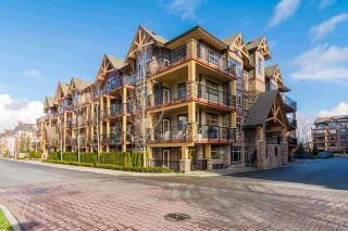 "Main Photo: 417 8328 207A Street in Langley: Willoughby Heights Condo for sale in ""Yorkson Creek"" : MLS®# R2258705"