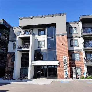 Main Photo: 315 1144 ADAMSON Drive SW in Edmonton: Zone 55 Condo for sale : MLS® # E4080696