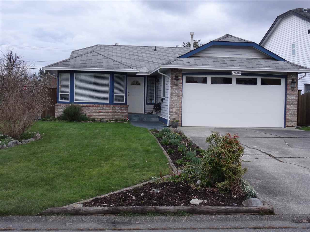 Main Photo: 11686 231B Street in Maple Ridge: East Central House for sale : MLS® # R2245373