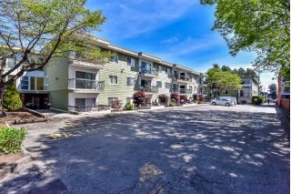 "Main Photo: 250B 8635 120 Street in Delta: Annieville Condo for sale in ""Delta Cedars"" (N. Delta)  : MLS®# R2267280"