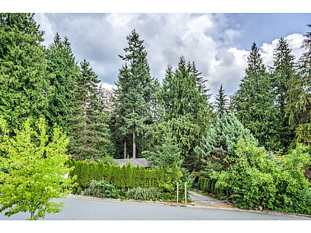 Main Photo: 24070 132ND Avenue in Maple Ridge: Silver Valley House for sale : MLS®# V1135979