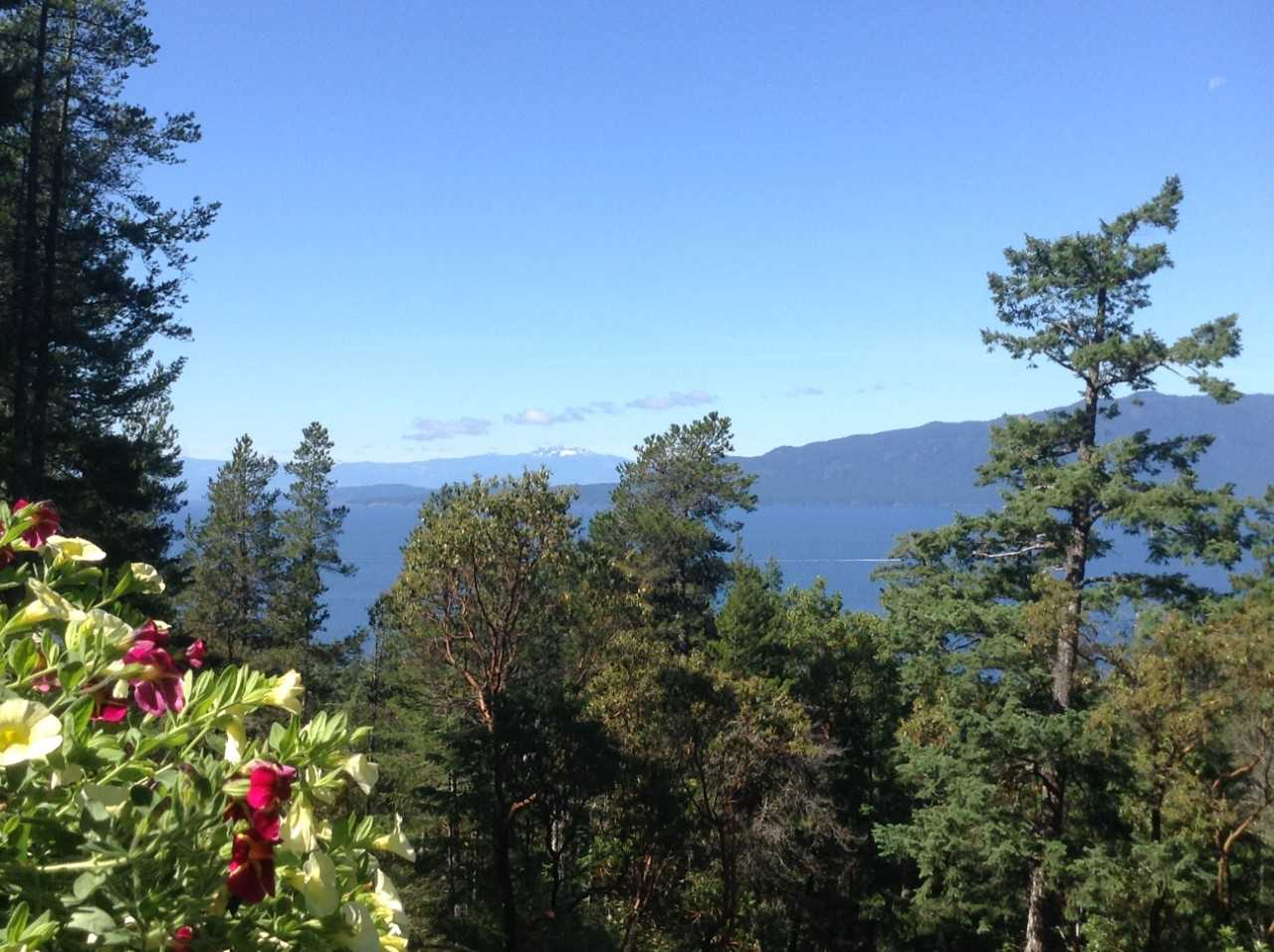 "Photo 3: Photos: 11808 SUNSHINE COAST Highway in Pender Harbour: Halfmn Bay Secret Cv Redroofs House for sale in ""MIDDLEPOINT"" (Sunshine Coast)  : MLS® # R2102704"