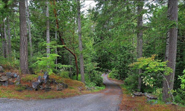 "Photo 12: Photos: 11808 SUNSHINE COAST Highway in Pender Harbour: Halfmn Bay Secret Cv Redroofs House for sale in ""MIDDLEPOINT"" (Sunshine Coast)  : MLS® # R2102704"