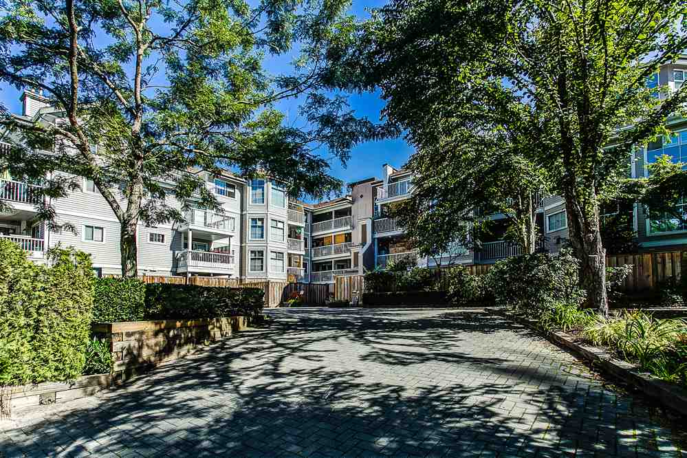 "Main Photo: 103 2678 DIXON Street in Port Coquitlam: Central Pt Coquitlam Condo for sale in ""SPRINGDALE"" : MLS® # R2202418"