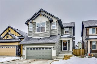 Main Photo: 95 EVANSRIDGE Close NW in Calgary: Evanston House for sale : MLS® # C4161138