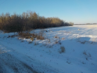 Main Photo: 572 RR252: Rural Sturgeon County Rural Land/Vacant Lot for sale : MLS(r) # E4054681