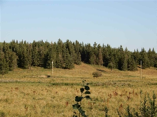 Main Photo: Township 570 Range Road 240: Rural Sturgeon County Rural Land/Vacant Lot for sale : MLS® # E4080007