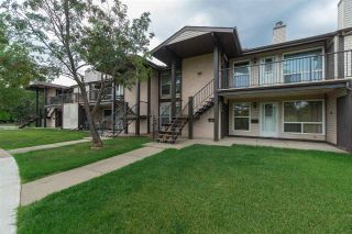 Main Photo: 2117 SADDLEBACK Road in Edmonton: Zone 16 Carriage for sale : MLS® # E4087900