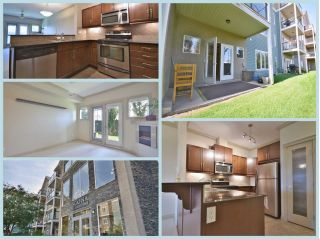 Main Photo: 107 10121 80 Avenue in Edmonton: Zone 17 Condo for sale : MLS® # E4090284