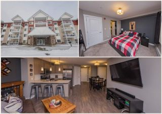 Main Photo: 310 2229 44 Avenue in Edmonton: Zone 30 Condo for sale : MLS®# E4135324