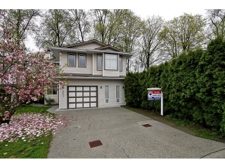 Main Photo: 20677 120A Avenue in Maple Ridge: Northwest Maple Ridge House for sale : MLS® # V1059082