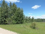Main Photo: 11 52330 RGE RD 24 Road: Rural Parkland County Rural Land/Vacant Lot for sale : MLS(r) # E4069359
