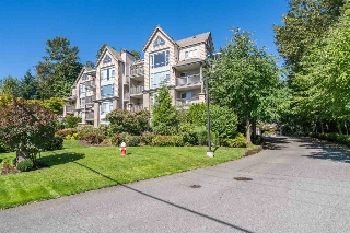 "Main Photo: 505 22233 RIVER Road in Maple Ridge: West Central Condo for sale in ""RIVER GARDENS"" : MLS® # R2205032"