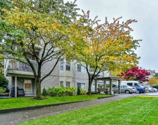 "Main Photo: 302 9942 151 Street in Surrey: Guildford Condo for sale in ""WEST CHESTER"" (North Surrey)  : MLS® # R2216856"
