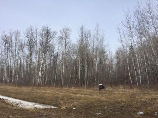 Main Photo: Lot 8 645048 RR 200: Rural Athabasca County Rural Land/Vacant Lot for sale : MLS® # E4057696