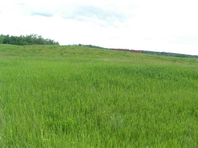 Photo 4: 39 Paradise Hills in Rural Leduc County: Zone 80 Rural Land/Vacant Lot for sale : MLS(r) # E4025520