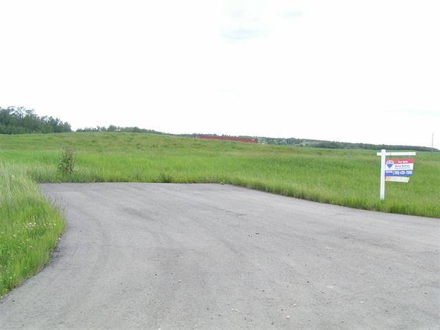 Photo 3: 39 Paradise Hills in Rural Leduc County: Zone 80 Rural Land/Vacant Lot for sale : MLS(r) # E4025520
