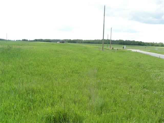 Photo 5: 39 Paradise Hills in Rural Leduc County: Zone 80 Rural Land/Vacant Lot for sale : MLS(r) # E4025520