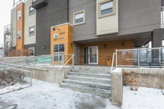 Main Photo:  in Edmonton: Zone 15 Condo for sale : MLS® # E4088454