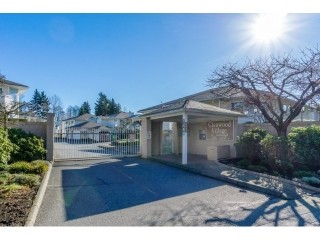 "Main Photo: 239 7156 121 Street in Surrey: West Newton Townhouse for sale in ""Glenwood Village"" : MLS® # R2036835"