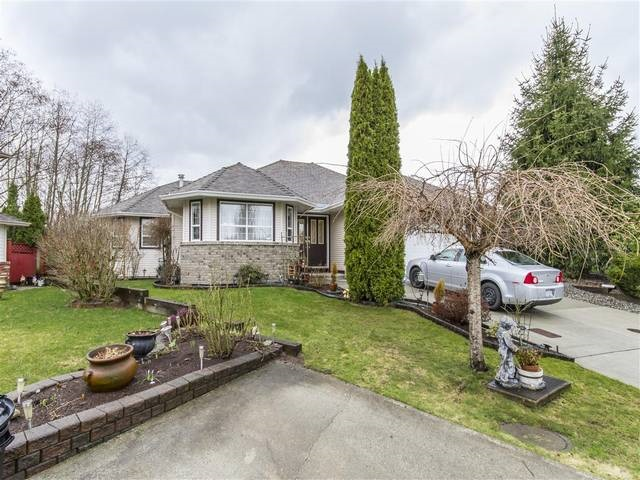 Main Photo: 23800 122 Avenue in Maple Ridge: East Central House for sale : MLS® # R2151061
