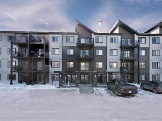 Main Photo: 427 504 ALBANY Way in Edmonton: Zone 27 Condo for sale : MLS®# E4098381