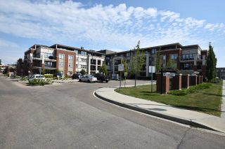 Main Photo: 208 4450 MCCRAE Avenue in Edmonton: Zone 27 Condo for sale : MLS®# E4123858