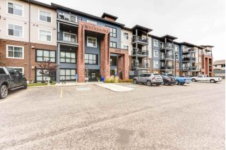Main Photo: 209 5510 SCHONSEE Drive in Edmonton: Zone 28 Condo for sale : MLS®# E4130979