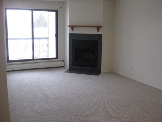 Main Photo: 305 4003 26 Avenue in Edmonton: Zone 29 Condo for sale : MLS(r) # E4045438