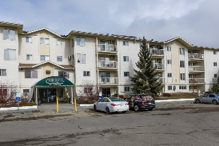 Main Photo: 113 18012 95 Avenue in Edmonton: Zone 20 Condo for sale : MLS(r) # E4056431