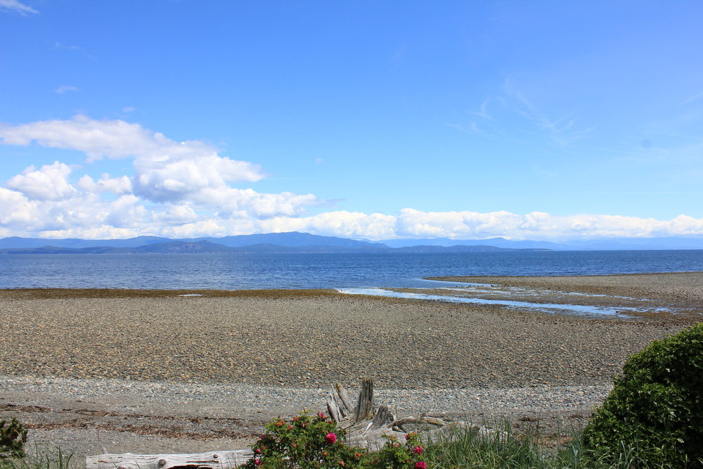 Photo 10: 1713 Admiral Tryon Blvd in Parksville: Beach Home for sale