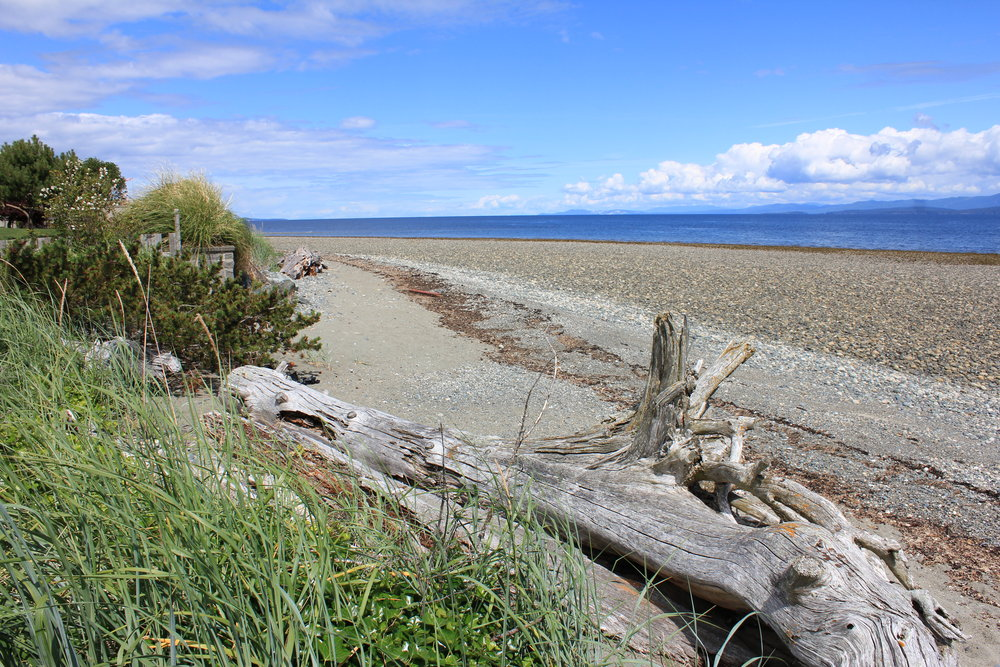 Photo 7: 1713 Admiral Tryon Blvd in Parksville: Beach Home for sale