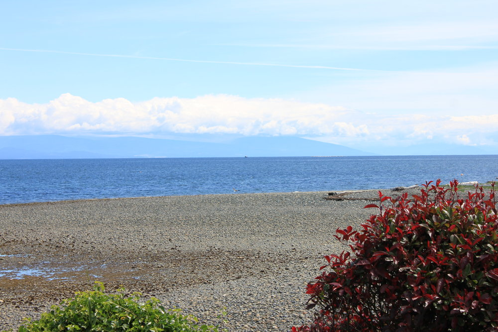 Photo 9: 1713 Admiral Tryon Blvd in Parksville: Beach Home for sale