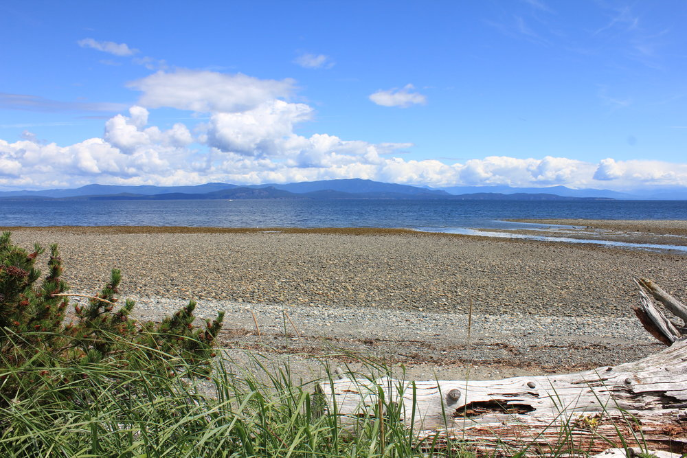 Photo 6: 1713 Admiral Tryon Blvd in Parksville: Beach Home for sale