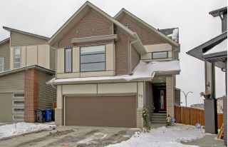 Main Photo: 35 WALDEN Green SE in Calgary: Walden House for sale : MLS® # C4145138