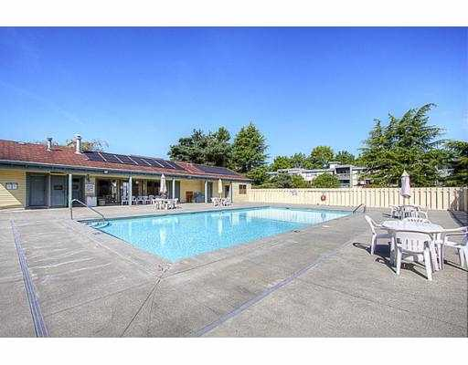 "Photo 21: 209 3411 SPRINGFIELD Drive in Richmond: Steveston North Condo for sale in ""BAYSIDE COURT"" : MLS(r) # V908427"