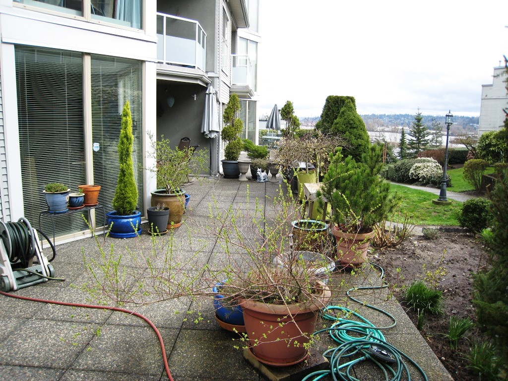 "Photo 13: 105 68 RICHMOND Street in New Westminster: Fraserview NW Condo for sale in ""GATEHOUSE PLACE"" : MLS(r) # R2046449"