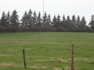 Main Photo: 14 53160 RR 212 Road: Rural Strathcona County Rural Land/Vacant Lot for sale : MLS(r) # E4036273